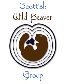 Scottish wild beaver group logo