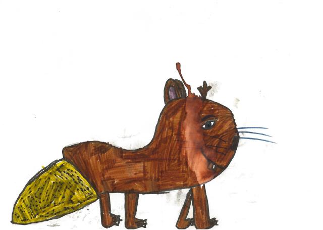 beaver card 2